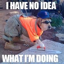 Meme Construction - silly dog you can t do construction by bacon pancakes meme center