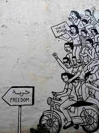 Murals Custom Hand Painted Wall Murals By Art Effects Art Revolution Blooms After Arab Spring Npr