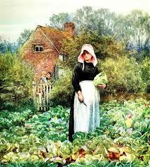 vegetable gardening tips for beginners u2013 vegetablegardenplanning org