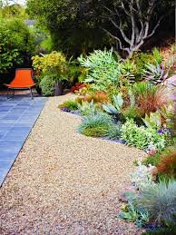 Drought Friendly Landscaping 430 best drought tolerant gardens images on pinterest