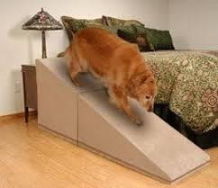 dog ramps for tall beds foter
