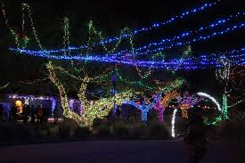 Phoenix Zoo Christmas Lights by Motel Miguel Reid Park Zoo Lights