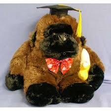 dog graduation cap and gown 12 5 whistling gorilla w graduation cap