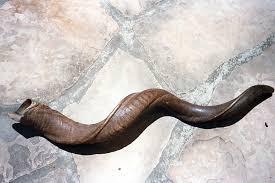 shofar rams horn at the editor s desk five reasons i rosh hashanah