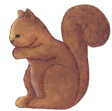 squirrel images free free download clip art free clip art on