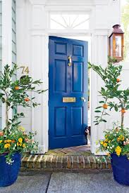 door house what does your front door color say about you southern living