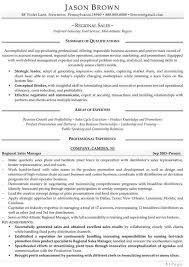Sample Resume  Professional Sales Resume Writers Writing Service