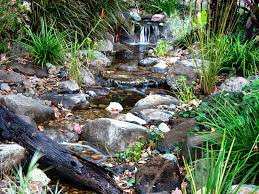 waterscapes australia streams ponds and natural swimming ponds