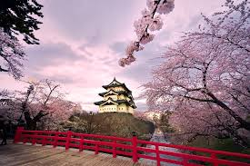 Cherry Blossom Map First Japanese Cherry Blossom Forecast Of 2017 Is Released
