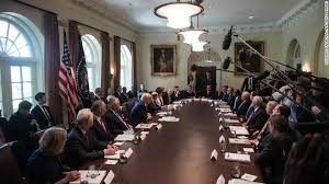 The Constitution Made No Mention Of A Presidential Cabinet 25th Amendment Deposing Trump Would Require Cabinet Mutiny