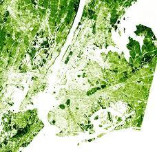 New York vegetaion images Urban remote sensing studies vegetation and population studies jpg
