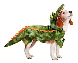 top 10 halloween costumes for girls gator dog one of petco u0027s top 10 halloween costumes for pets