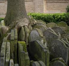 the hardy tree st pancras churchyard