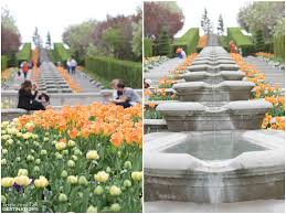 tulip festival at thanksgiving point lehi ut taste and tell