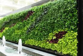 Home Vertical Garden by Vertical Vegetable Gardening Ideas Vertical Gardening Simple