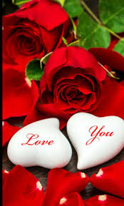 277 best for you images on pinterest red roses flowers and gifs