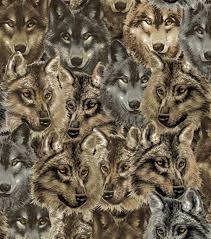 100 wolf print cushions evermade zoo portrait cushion wolf