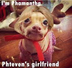 Dog Girlfriend Meme - tuna phteven is the funniest dog on the internet 20 pics funny