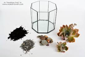 how to make a succulent terrarium make it and love it