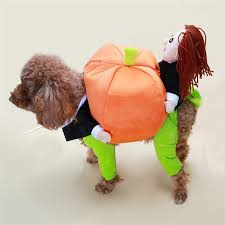 Cheap Dog Costumes Halloween Doggy Funny Pumpkin Dog Costumes Halloween Pumpkin Pet Coat