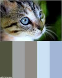 113 best images and color palettes images on pinterest color
