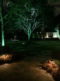 Dallas Landscape Lighting Moonlighting Tree Lighting Dallas Landscaping And Tree Trunks