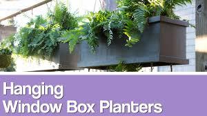 window box planters 101 hgtv