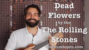 Dead Flowers Tabs - dead flowers the rolling stones easy beginner ukulele tutorial