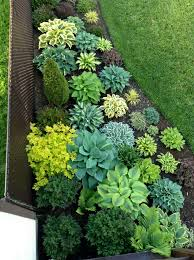 Shady Backyard Landscaping Ideas Gorgeous Hosta Planting Perfect For The Shade Secret Gardens