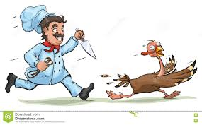 thanksgiving day turkey images cook with knife pursues frightened turkey fun concept for