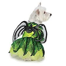 Spider Dog Halloween Costume 7 Spider Dog Costumes Turn Dog Cute Creepy Crawly