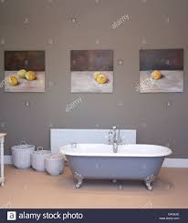 freestanding roll top bathtub in center of gray traditional