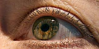 What Is Congenital Blindness Gene Therapy How A New Cure For Blindness Reverses Retinal Dystrophy