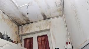 enlever humidité chambre combattre l odeur d humidité dans la maison