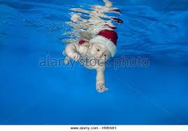 women swimming in pool with blue cap stock photos u0026 women swimming