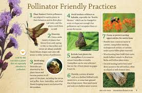 native plant guide native plants for pollinators prairie nursery