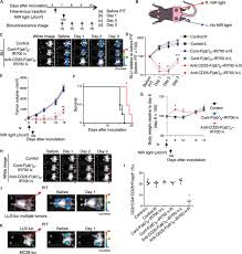 spatially selective depletion of tumor associated regulatory t