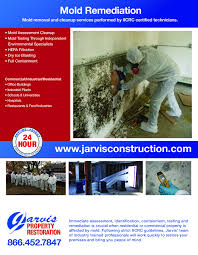 mold remediation black mold removal services