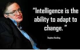 Stephen Hawking Meme - intelligence is the ability to adapt to change stephen hawking