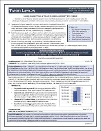 Resume For A Business Owner Sales Manager Resume With Charts And Graphs