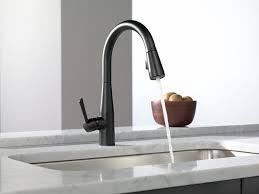 Moen Kleo Kitchen Faucet 100 Moen Kleo Kitchen Faucet Sink U0026 Faucet Moen Kitchen 100