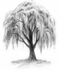 collection of 25 isaac and eileen the willow tree tatoo sketch