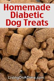 5 treats recipes for your dog and cat diabetic dog