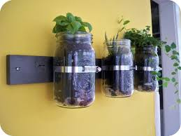 Mason Jar Wall Planter by The Next Bird Versatile Wall Planter