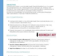 Sample Hybrid Resume by Hybrid Resume Template Cv Resume Ideas