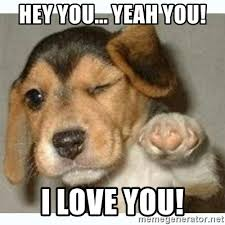 Hey I Love You Meme - hey you yeah you i love you fist bump puppy meme generator