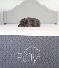 Sleep Number Bed Coupons Codes Puffy Mattress Review In Depth U0026 Honest Mattress Reviews U0026 Coupons