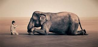 Blind Men And The Elephant Story For Children Professional Development Category Tag Posts I Am Technology Blog