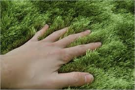 china bright green grass rug tufted carpet mat 200x140cm oeko