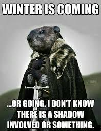 Bill Murray Groundhog Day Meme - 25 best bill murray images on pinterest bill murray bill o